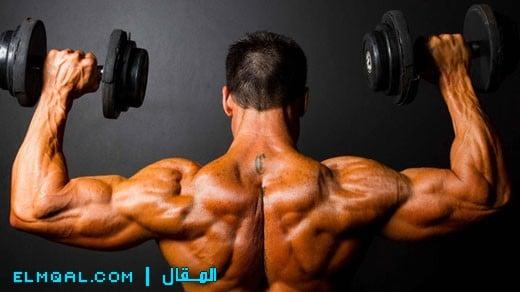 تمرين العضلات الكبيرة والعضلات الصغيرة