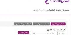 فاتورة التليفون الأرضي المصرية للاتصالات